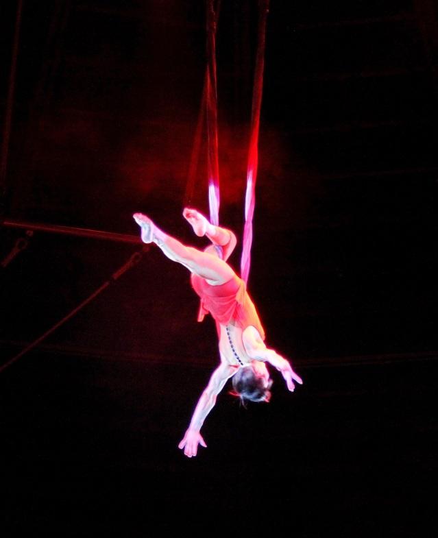 circus-835705